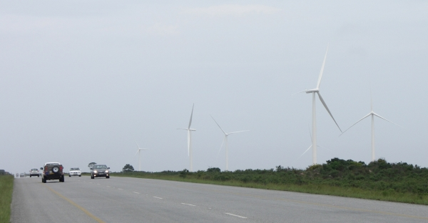 Windfarm in Jeffreys Bay nahe der N2
